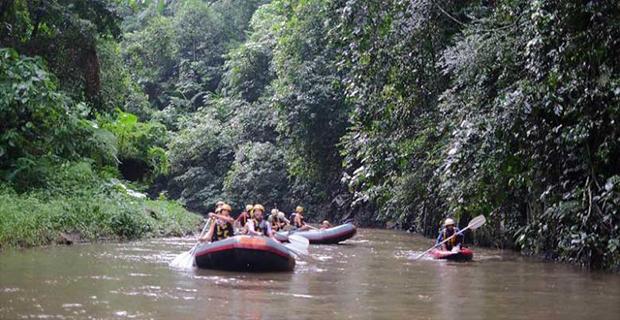 Kapan waktu yang Baik Untuk Menantang Jeram-jeram Sungai Ayung?
