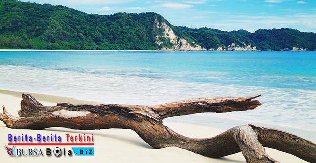 Manjakan Diri Dengan Keseruan Berselancar di Pantai Tarimbing Daerah Sumba Timur