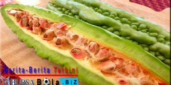 Manfaat Makanan Pahit Untuk Kesehatan